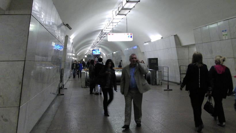 Упавший под поезд вмосковском метро мужчина выжил