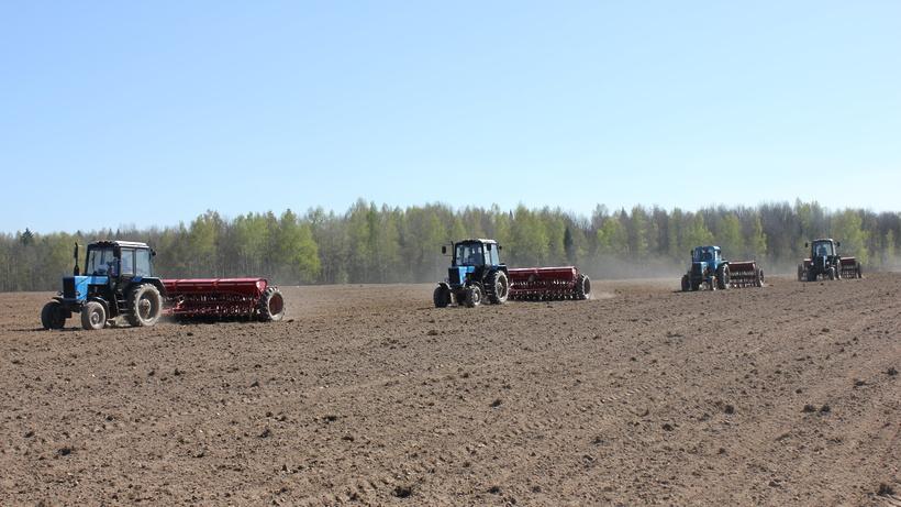 Пресс-конференция по вопросам весенних полевых работ в Подмосковье состоится в четверг