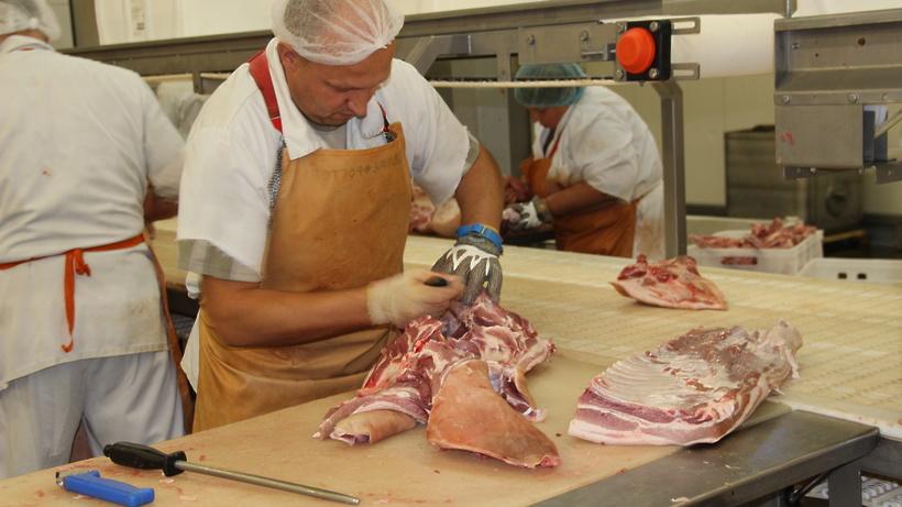 мастер колбасного цеха обучение