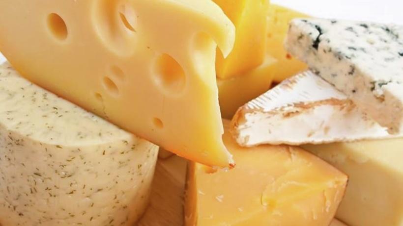 Сырное производство является предметом особого внимания Минсельхозпрода – Разин