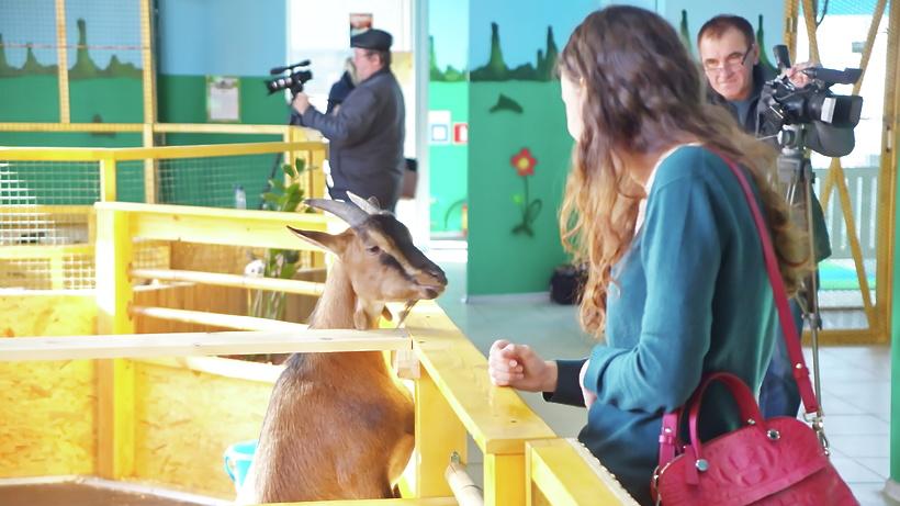 Роспотребнадзор закрыл в столице контактный зоопарк занарушения