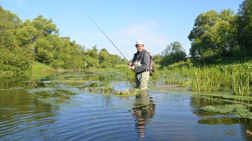 ловля рыбы в пруду в москве