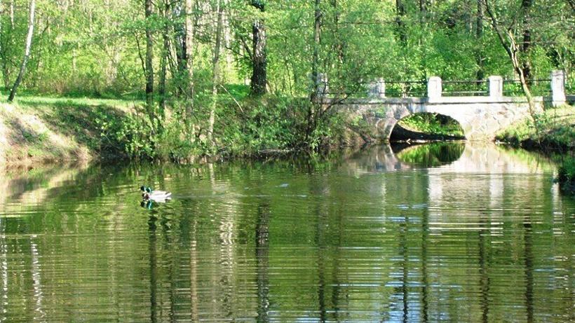 Москва ищет подрядчика нареабилитацию 5 прудов вБирюлевском дендропарке