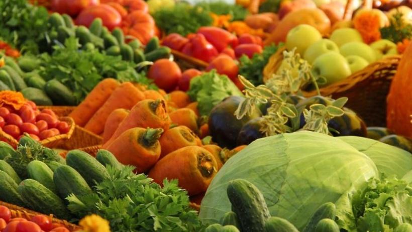 Власти Подмосковья планируют обеспечить жителей местными овощами полностью к 2018 году