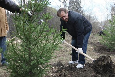 Подушкинский лес благоустроили в Одинцовском округе в рамках субботника