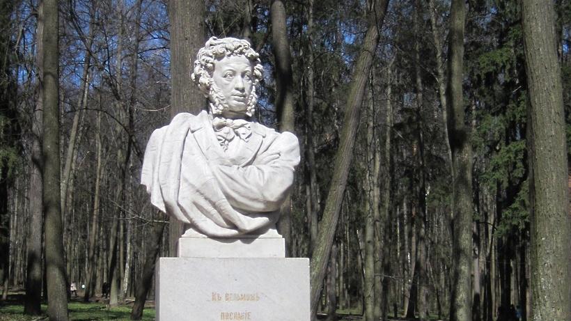 Около 30 тыс посетителей принял парк музея‑усадьбы «Архангельское» в Красногорске за месяц