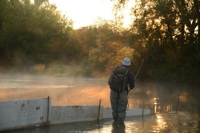 Минэкологии Подмосковья сможет ограничивать любительскую рыбалку