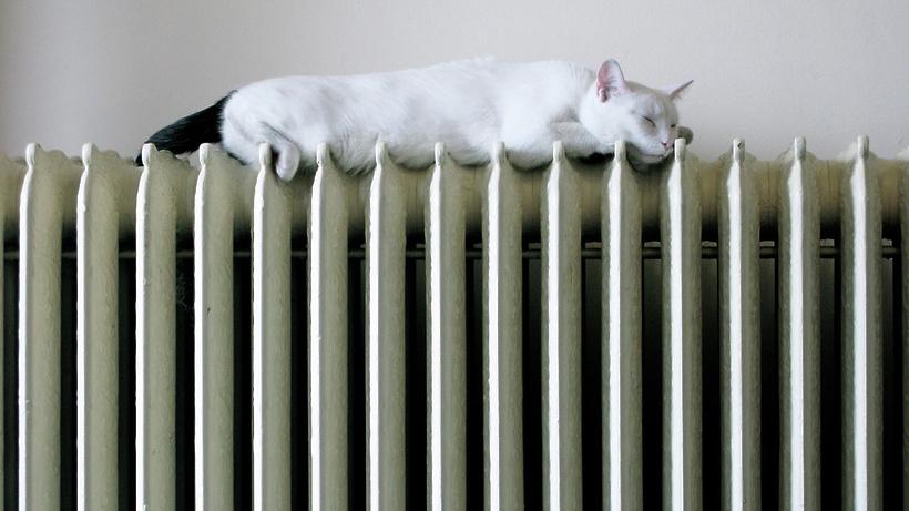 Всоциальные заведения Подмосковья начали подавать тепло