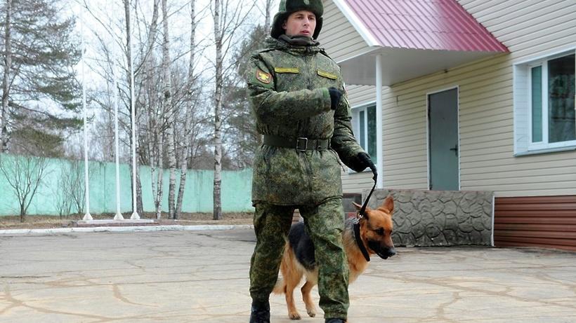 Волковский отдел фрунзенского района судебных приставов спб