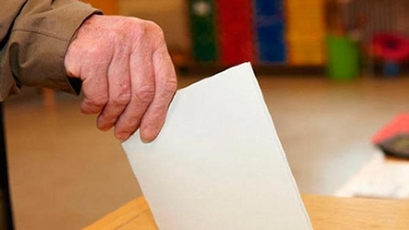 ВМосковской области пройдёт 5 избирательных кампаний