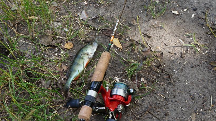 рыбалка в подмосковье на москве реке бесплатно