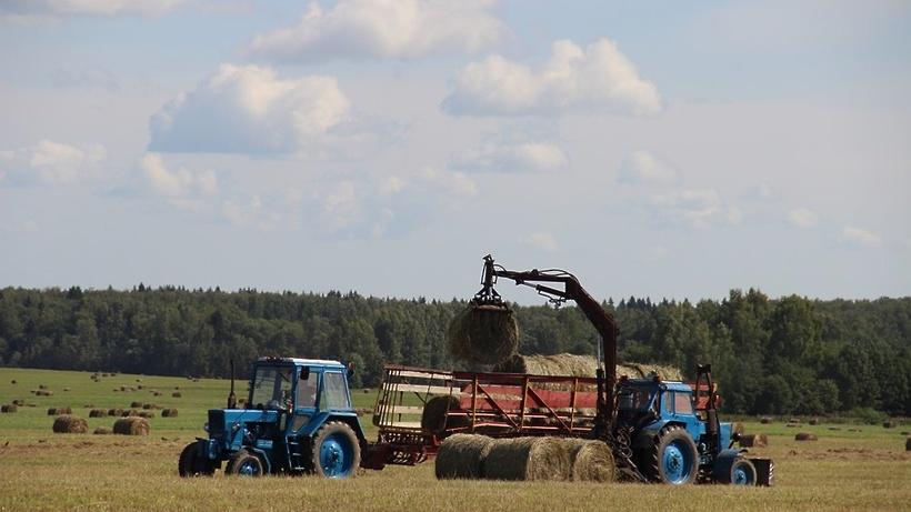 ВВоронежской области собрали 1-ый млн тонн зерна