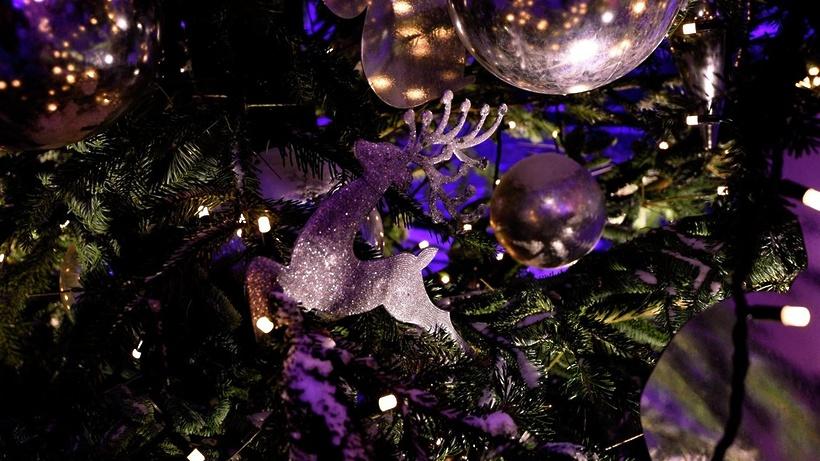 Световая инсталляция «Музыкальный лес» появится зимой наПушкинской площади в столице России