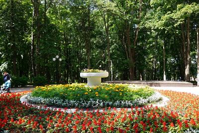 Парки Красногорска открыли для посетителей