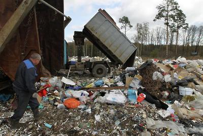 Более 1 тыс кубометров мусора вывезли из трех лесничеств Подмосковья