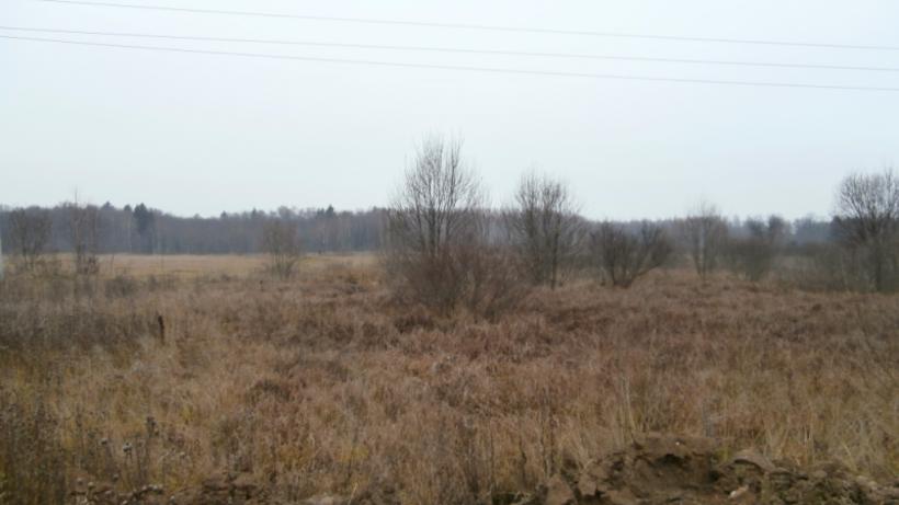 Собственник земельного участка вОстровском районе заплатит штраф 200 тысяч руб.