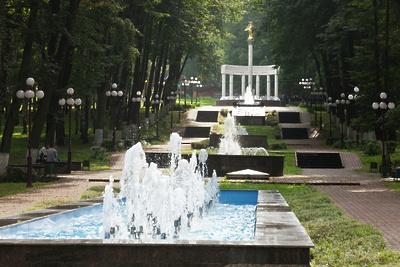 14 парков благоустроили в Подмосковье