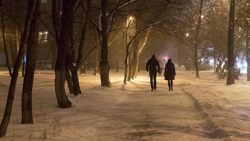 Вмосковском регионе выпало практически 5см снега