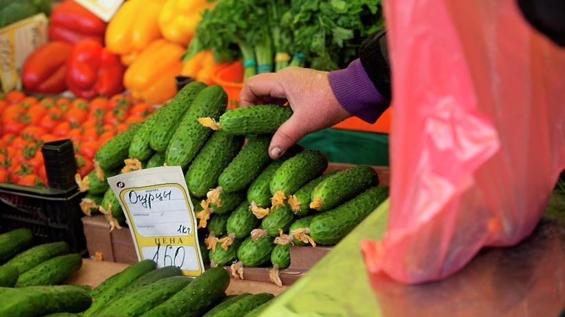Какие эксклюзивные овощи и фрукты выращивают в подмосковье?