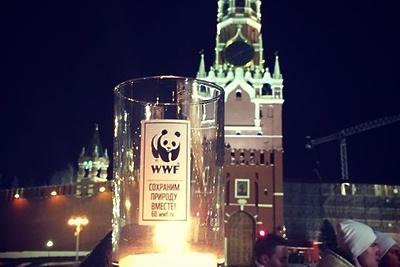 Как прошла акция «Час Земли»— 2017 в московском регионе