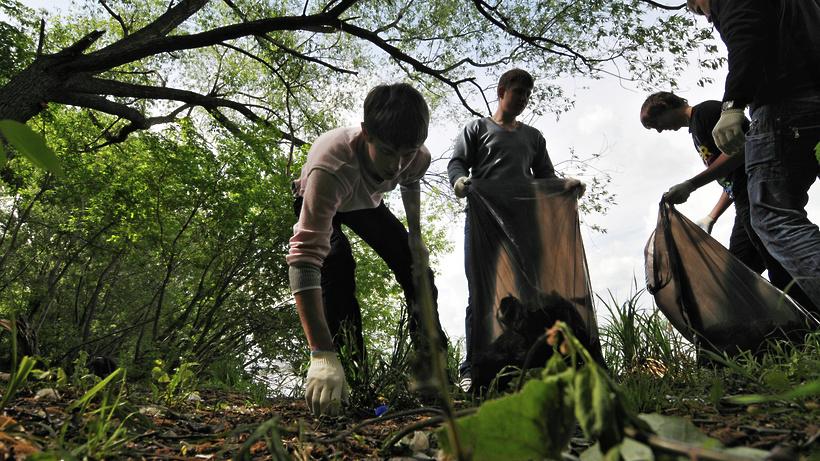 фото уборки леса новых друзей жанатасе