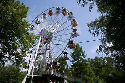 Три парка Красногорска обработают от клещей во вторник