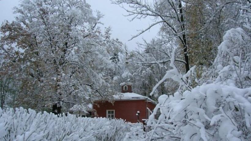 «Зимние праздники» проходят в музее-усадьбе «Мураново» в Пушкинском районе