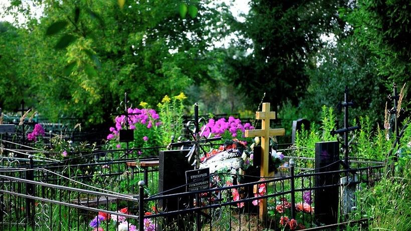 Минпотребрынка проверит состояние подмосковных кладбищ после урагана