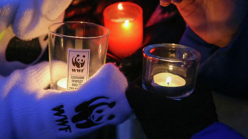 Подмосковье приняло участие в экологической акции «Час Земли»