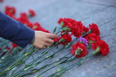 Порядка 70 памятников в Домодедове приведут в порядок к 75‑летию Великой Победы