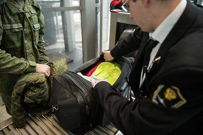 Свыше 710 кг живых устриц из Новой Зеландии задержали на складе в аэропорту «Домодедово»