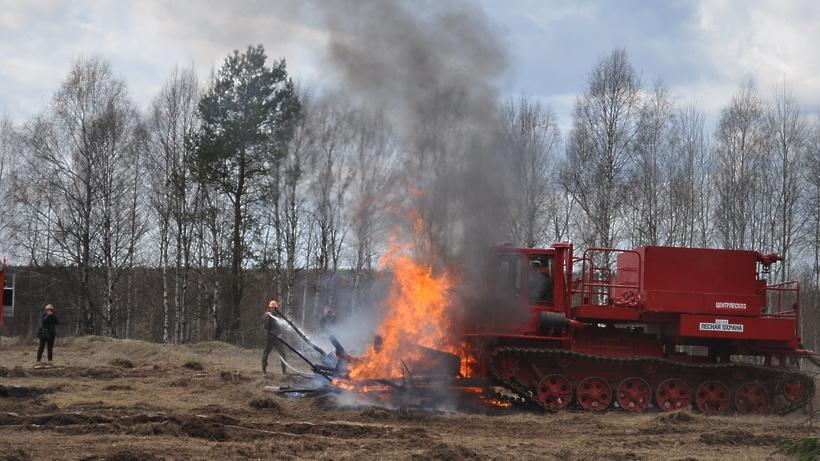 Число лесных пожаров в Подмосковье сократилось на 35% в 2016 году – Комлесхоз