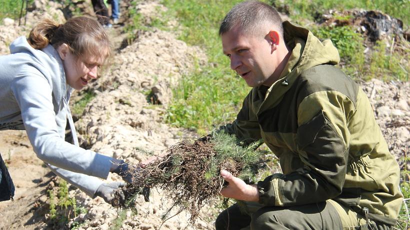 Жители региона получили более 1 млн приглашений на акцию «Лес Победы» через «Добродел»