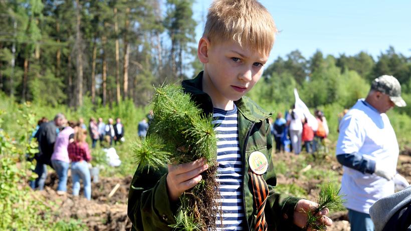 ВПодмосковье вакции «Лес Победы» поучаствовали около 100 000 человек