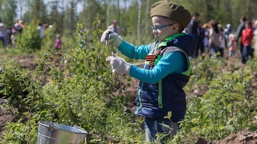 Акция «Лес Победы» пройдет вПодмосковье вконце апреля