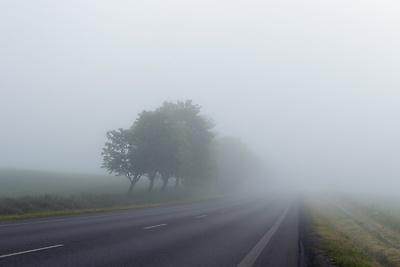 ЦОДД призвал водителей к осторожности на дорогах из‑за тумана
