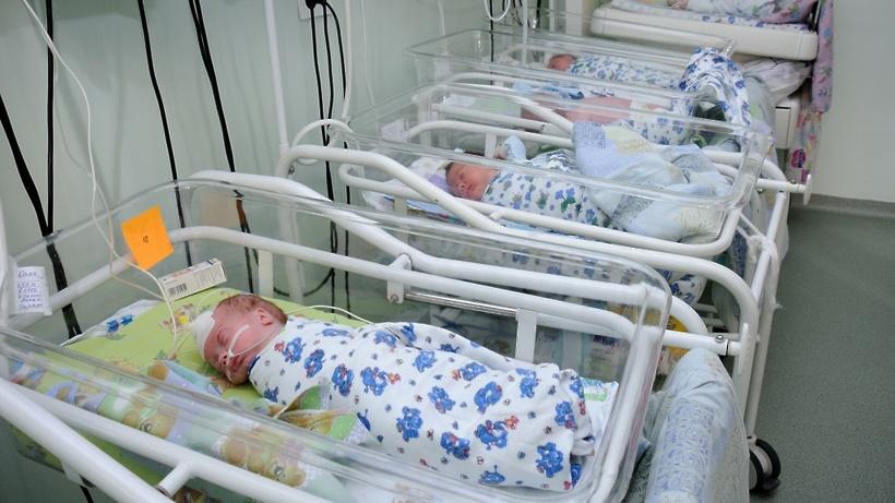 Забралова: Более 20 тыс. семей в Подмосковье получили пособие при рождении ребенка за 2016 год