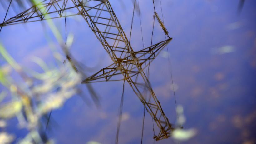 Более 250 километров линий электропередачи отремонтировали в Подмосковье в 2017 году