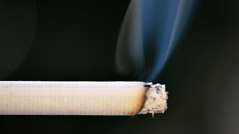 Табачное изделие в виде тонкой сигареты купить сигареты без фильтра мелким оптом