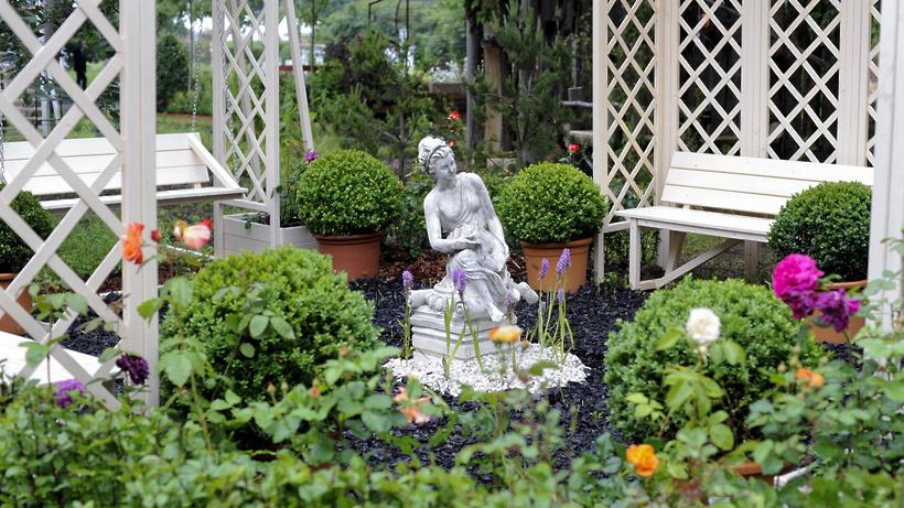 Фото садов подмосковья
