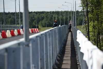 Воробьев рассказал о строительстве путепроводов в Московской области