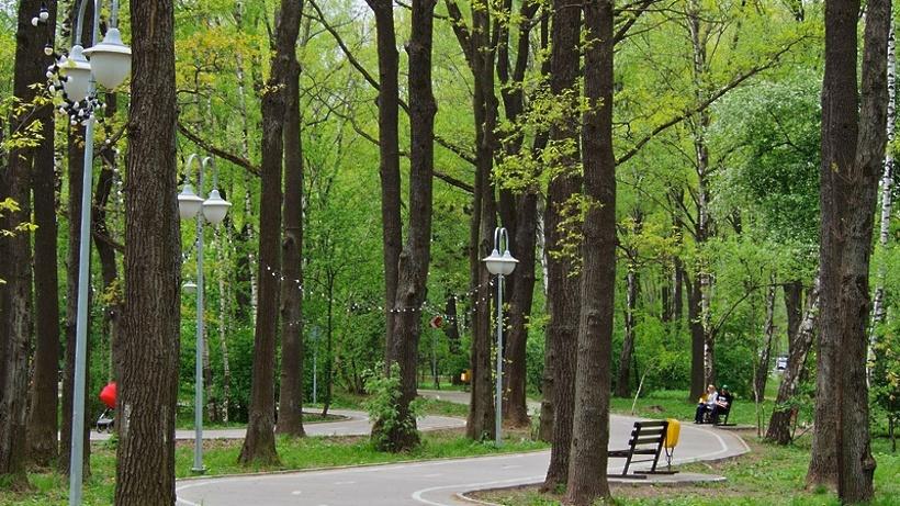 Количество парков отдыха в области увеличилось в 3,5 раза с 2013 года