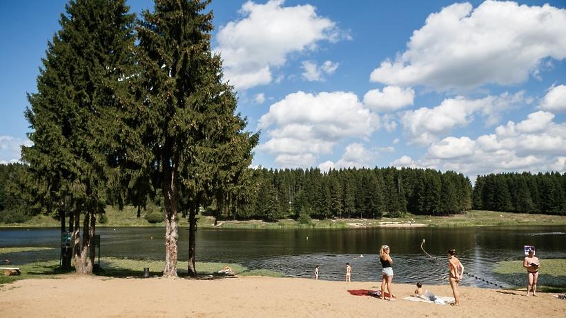 Подмосковные пляжи подготовят к купальному сезону до 1 июня