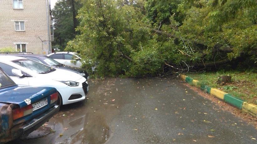 Дерево упало на Лэнд-Ровер в столице