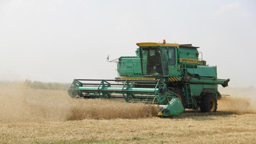 Габдрахманов: Сельское хозяйство – самая быстрорастущая отрасль в Подмосковье