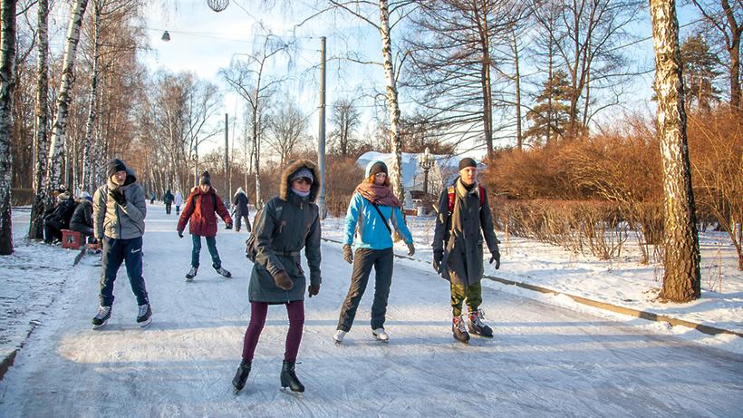 Зимой в«Сокольниках» появятся лесной каток иледяной конструктор
