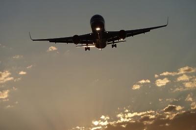 Устроивший дебош на борту самолета, прилетевшего в Домодедово, предстанет перед судом