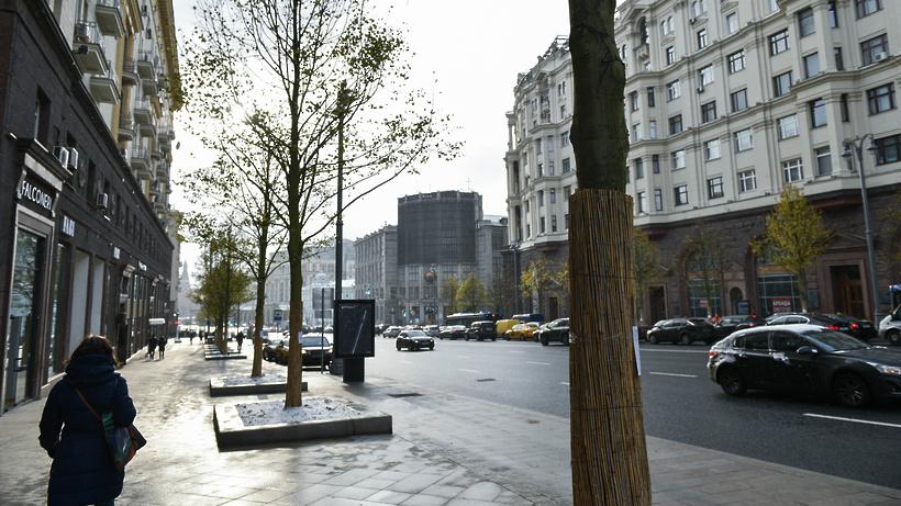 Для центра столицы закупят 3 тыс. малых архитектурных форм