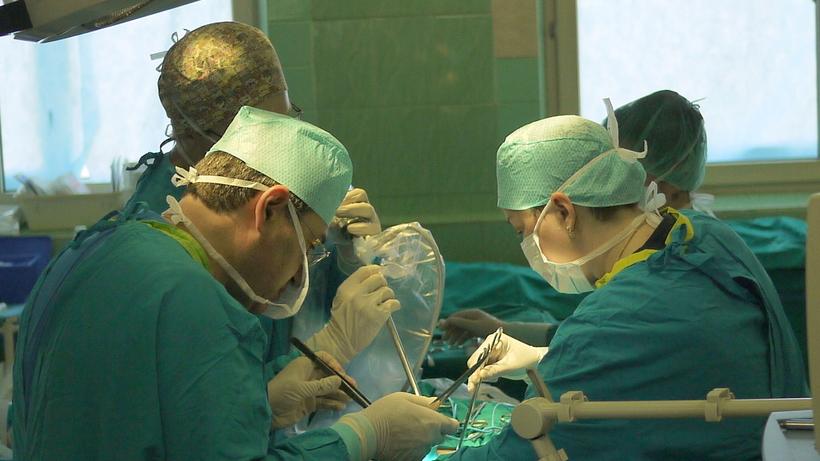 Свыше 12 тыс. врачей Подмосковья прошли последипломную подготовку в текущем году