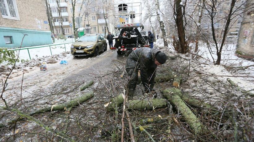 ВПодмосковье из-за непогоды без электричества остались 46 населённых пунктов